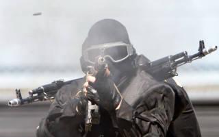 Проект фз о национальной гвардии